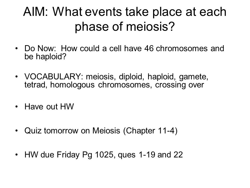 AIM: What events take place at each phase of meiosis? Do Now: How could a cell have 46 chromosomes and be haploid? VOCABULARY: meiosis, diploid, haplo