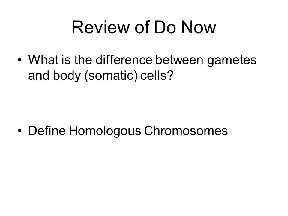 Review of Do Now What is the difference between gametes and body (somatic) cells? Define Homologous Chromosomes
