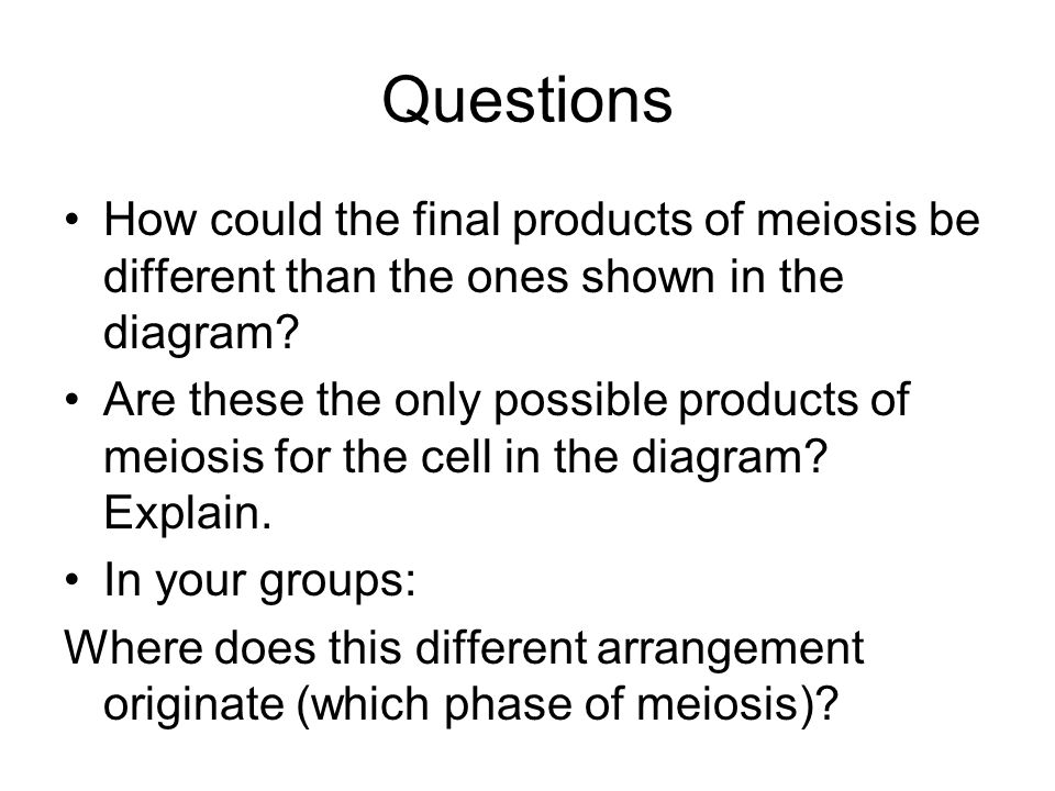 Questions How could the final products of meiosis be different than the ones shown in the diagram? Are these the only possible products of meiosis for