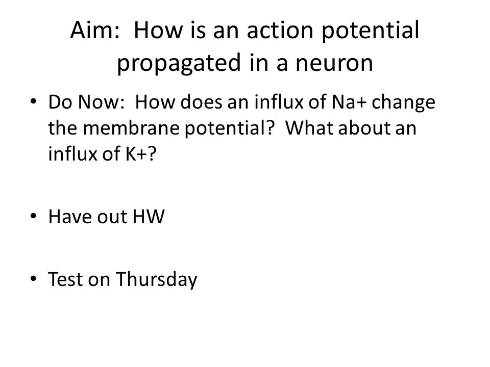 Aim: How is an action potential propagated in a neuron Do Now: How does an influx of Na+ change the membrane potential? What about an influx of K+? Ha