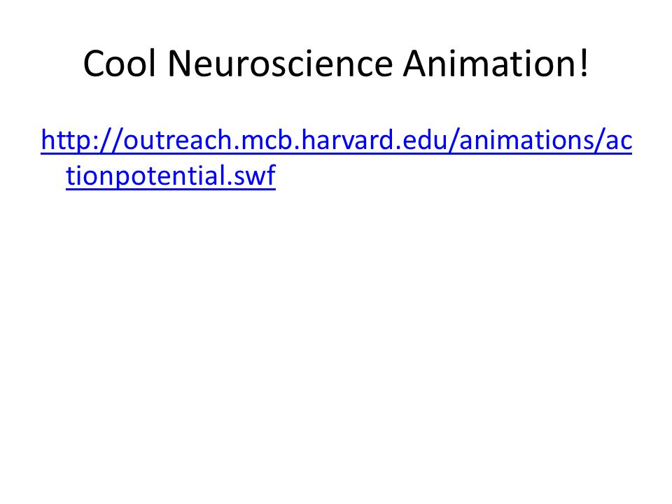 Cool Neuroscience Animation! http://outreach.mcb.harvard.edu/animations/ac tionpotential.swf