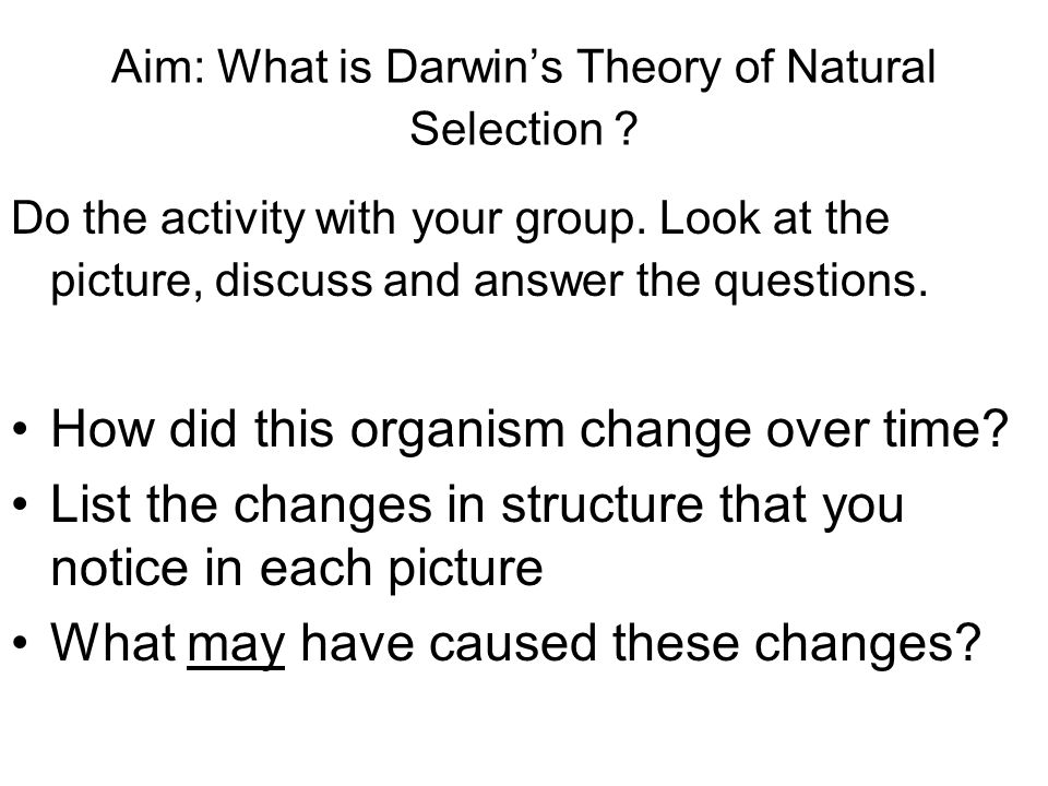 Aim: What is Darwin's Theory of Natural Selection .