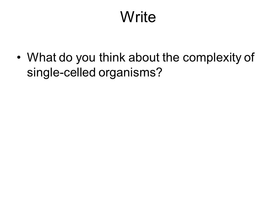 Write What do you think about the complexity of single-celled organisms?