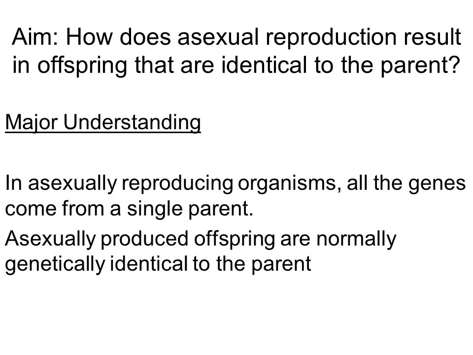 REPRODUCTION IN FLOWERING PLANTS Asexual Reproduction –Rhizomes –Tubers –Runners –Plantlets –Bulbs –Corms