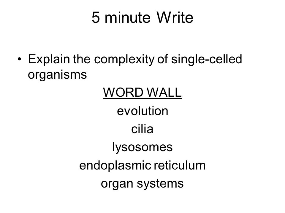 5 minute Write Explain the complexity of single-celled organisms WORD WALL evolution cilia lysosomes endoplasmic reticulum organ systems