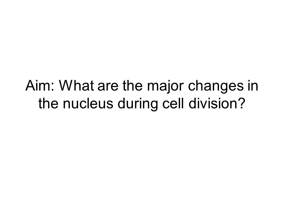 Aim: What are the major changes in the nucleus during cell division?