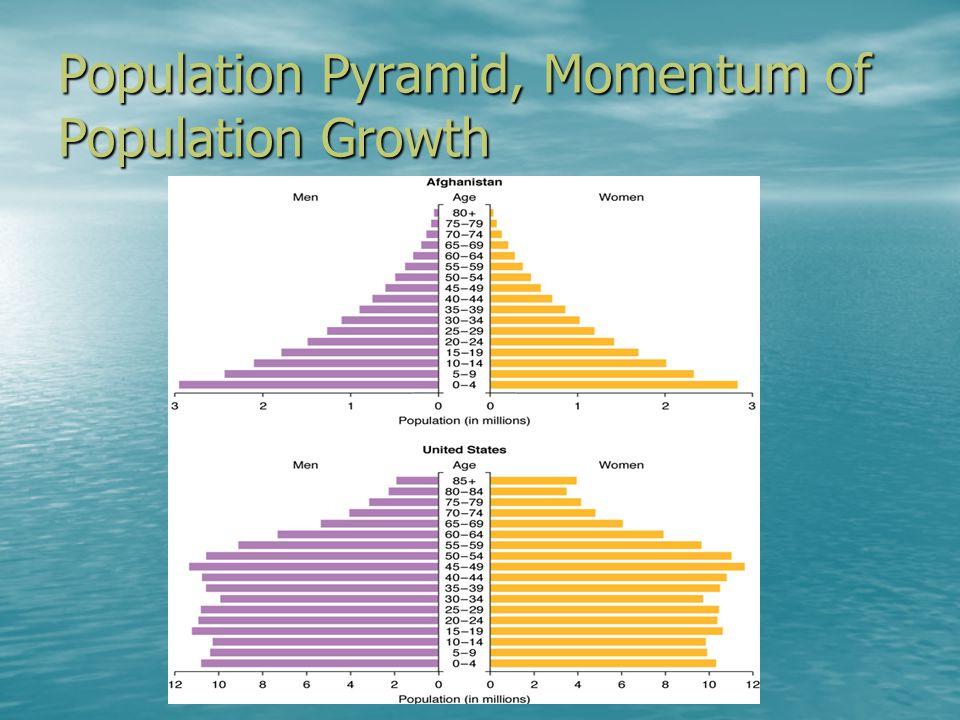Population Pyramid, Momentum of Population Growth
