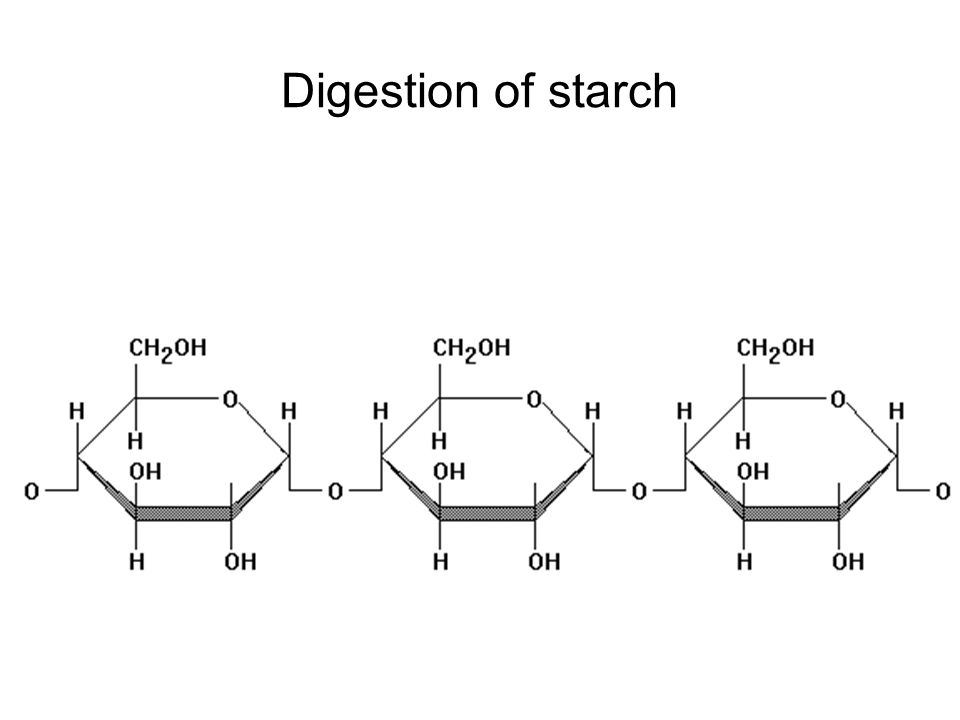 Digestion of starch