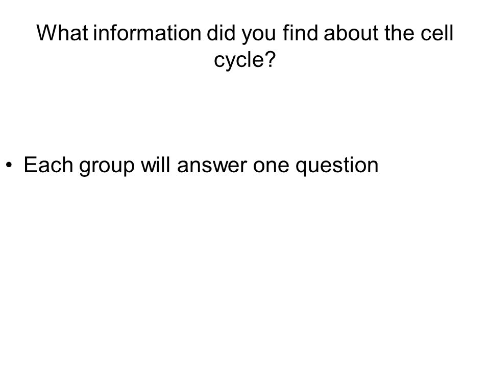 What information did you find about the cell cycle Each group will answer one question