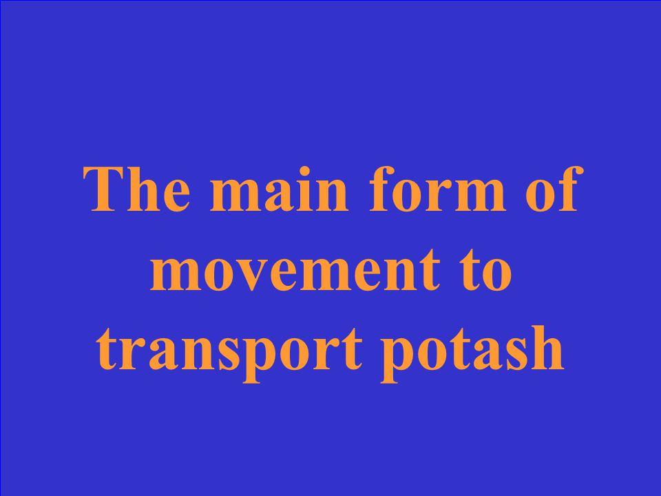What is potash