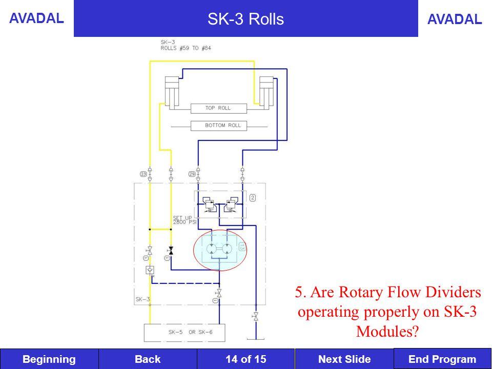 BeginningNext SlideBack End Program AVADAL 14 of 15 SK-3 Rolls 5.