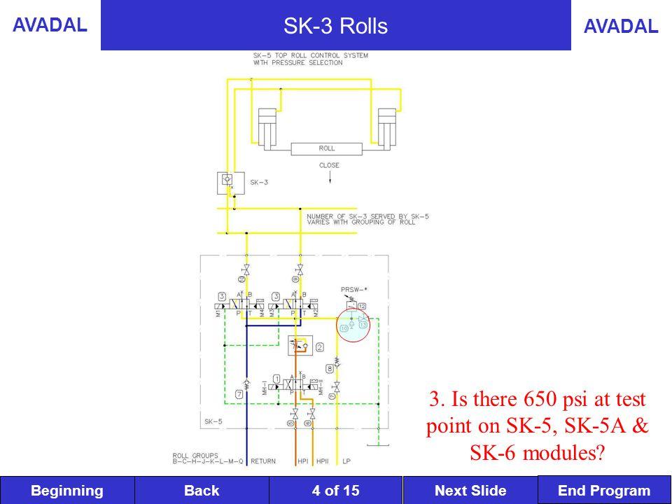 BeginningNext SlideBack End Program AVADAL 5 of 15 SK-3 Rolls 4.