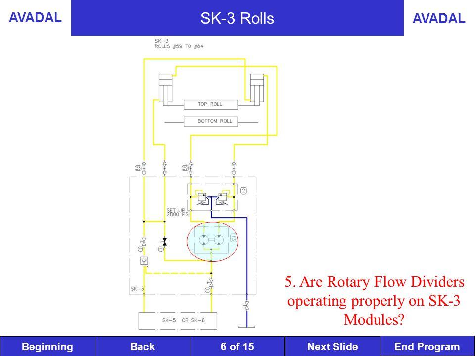 BeginningNext SlideBack End Program AVADAL 6 of 15 SK-3 Rolls 5.