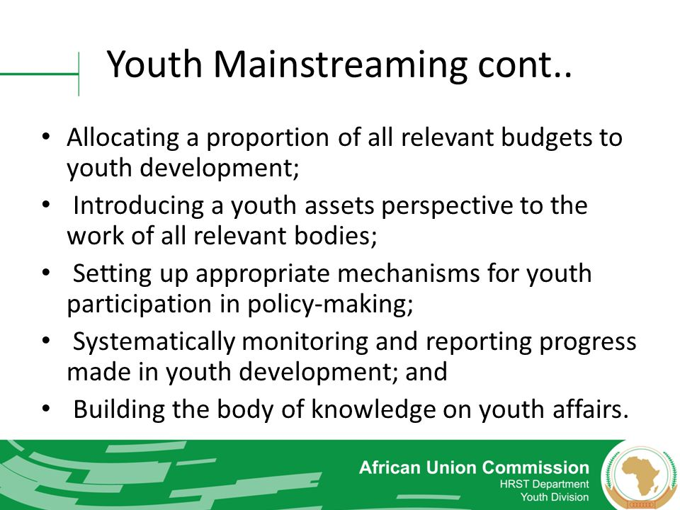 Youth Mainstreaming cont.. Allocating a proportion of all relevant budgets to youth development; Introducing a youth assets perspective to the work of