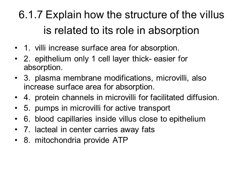 6.1.7 Explain how the structure of the villus is related to its role in absorption 1.