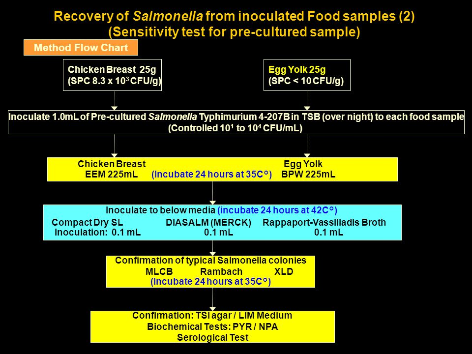 Recovery of Salmonella from inoculated Food samples (2) (Sensitivity test for pre-cultured sample) Method Flow Chart Chicken Breast 25g (SPC 8.3 x 10 3 CFU/g) Inoculate to below media (incubate 24 hours at 42C°) Compact Dry SL DIASALM (MERCK) Rappaport-Vassiliadis Broth Inoculation: 0.1 mL 0.1 mL 0.1 mL Confirmation: TSI agar / LIM Medium Biochemical Tests: PYR / NPA Serological Test Inoculate 1.0mL of Pre-cultured Salmonella Typhimurium 4-207B in TSB (over night) to each food sample (Controlled 10 1 to 10 4 CFU/mL) Confirmation of typical Salmonella colonies MLCB Rambach XLD (Incubate 24 hours at 35C°) Egg Yolk 25g (SPC < 10 CFU/g) Chicken Breast Egg Yolk EEM 225mL (Incubate 24 hours at 35C°) BPW 225mL