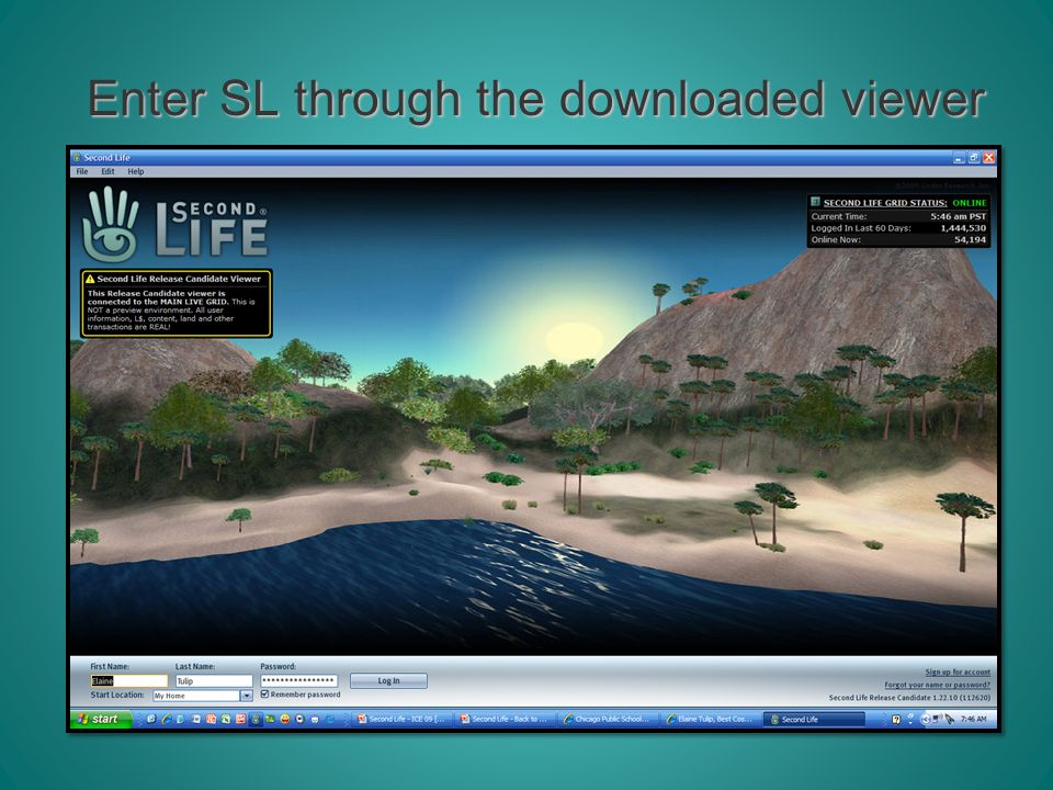 Enter SL through the downloaded viewer