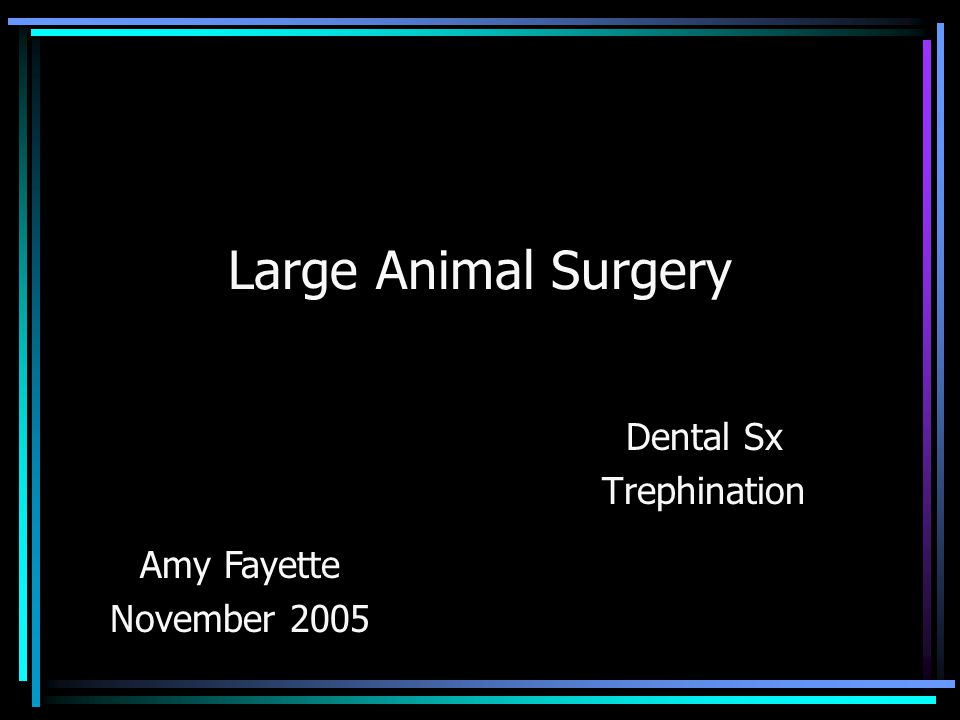 Large Animal Surgery Dental Sx Trephination Amy Fayette November 2005