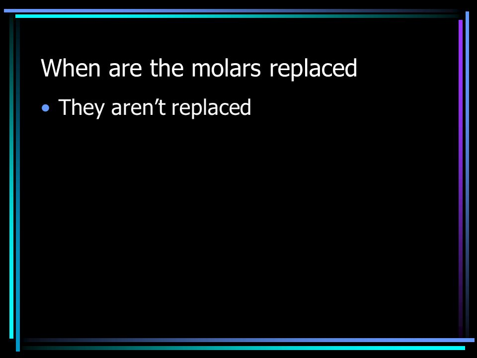 When are the molars replaced They aren't replaced
