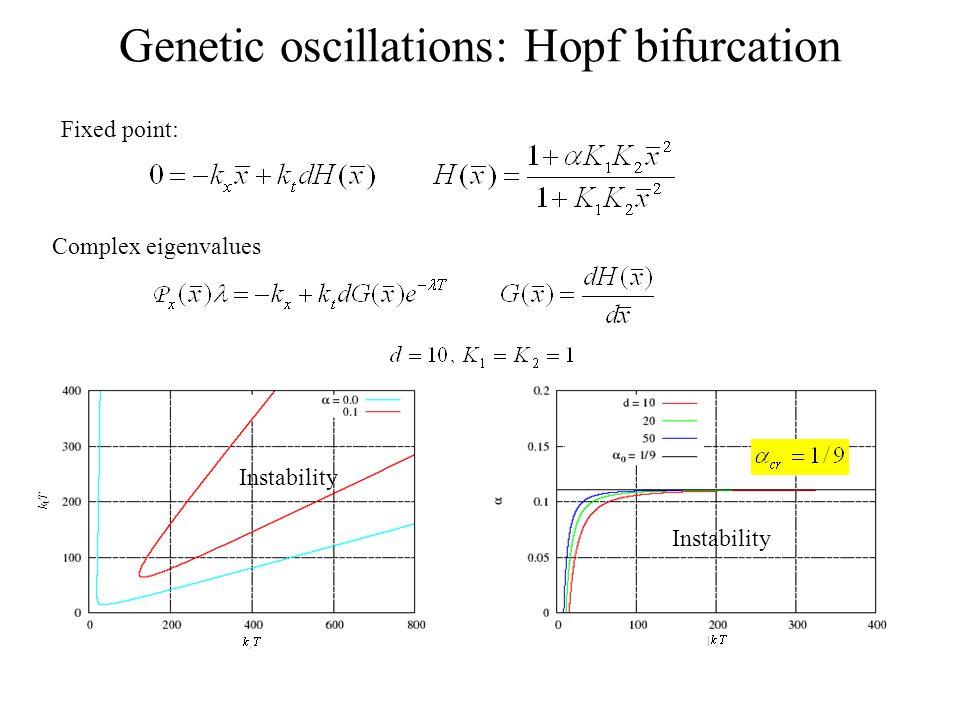 Genetic oscillations: Hopf bifurcation Fixed point: Complex eigenvalues Instability ktTktT