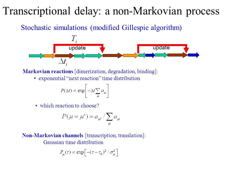 "Transcriptional delay: a non-Markovian process Markovian reactions [dimerization, degradation, binding]: exponential ""next reaction"" time distribution"