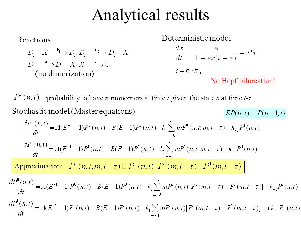 Analytical results Reactions: Deterministic model No Hopf bifurcation.