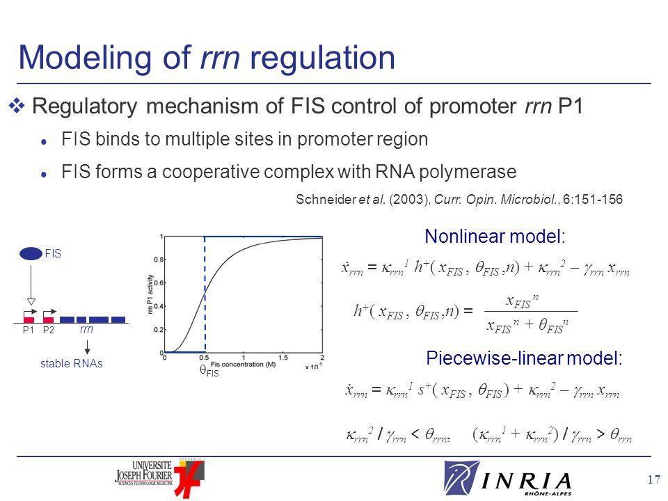 17 Nonlinear model: Modeling of rrn regulation FIS rrn P1P2 stable RNAs Schneider et al.