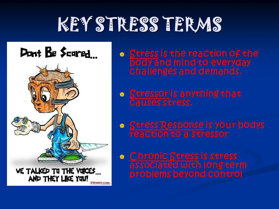 KEY STRESS TERMS   Stress is the reaction of the body and mind to everyday challenges and demands.