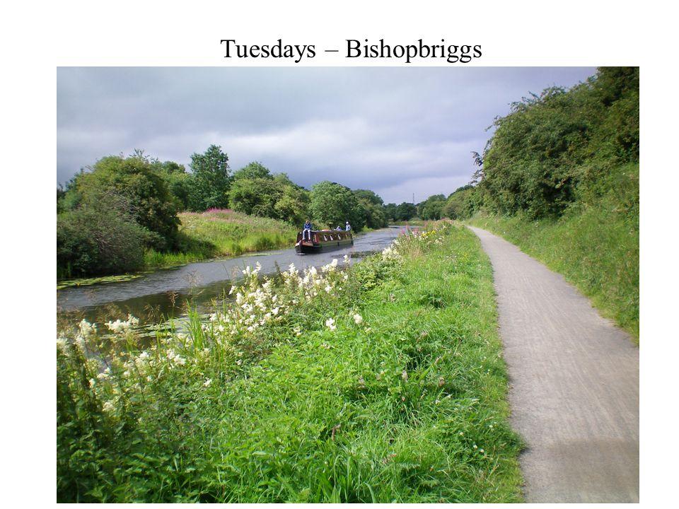 Tuesdays – Bishopbriggs