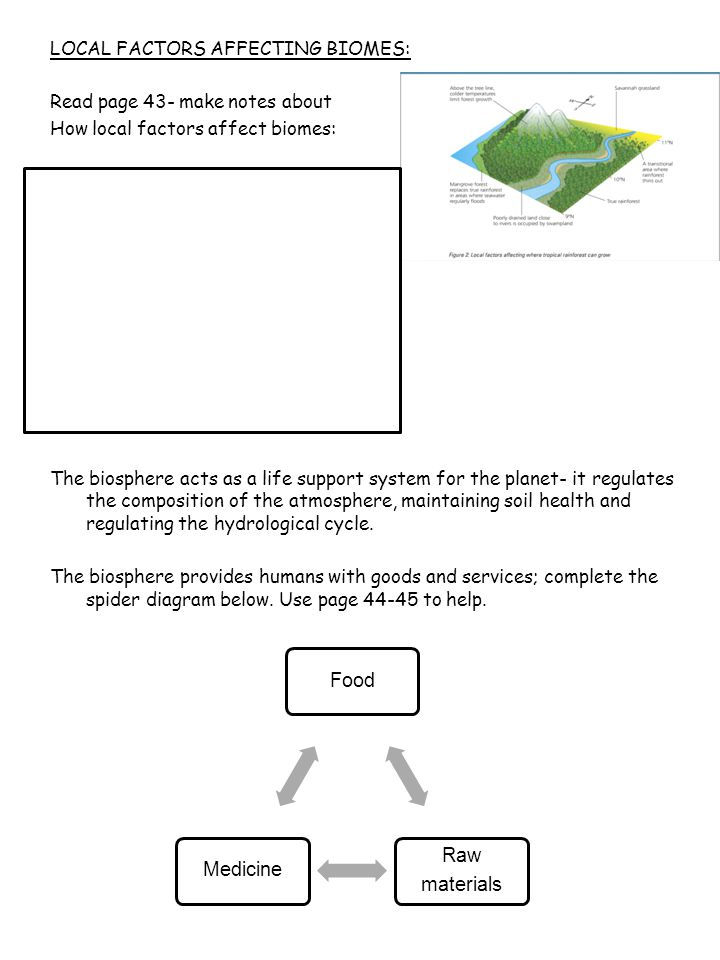 LOCAL FACTORS AFFECTING BIOMES: Read page 43- make notes about How local factors affect biomes: The biosphere acts as a life support system for the pl