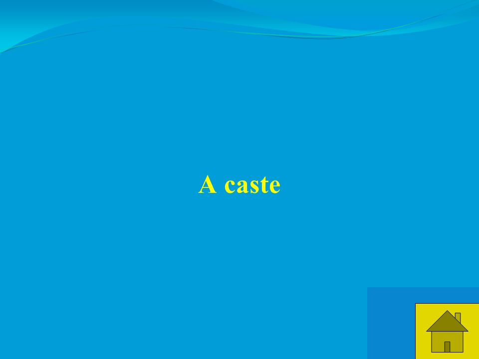 15 A caste