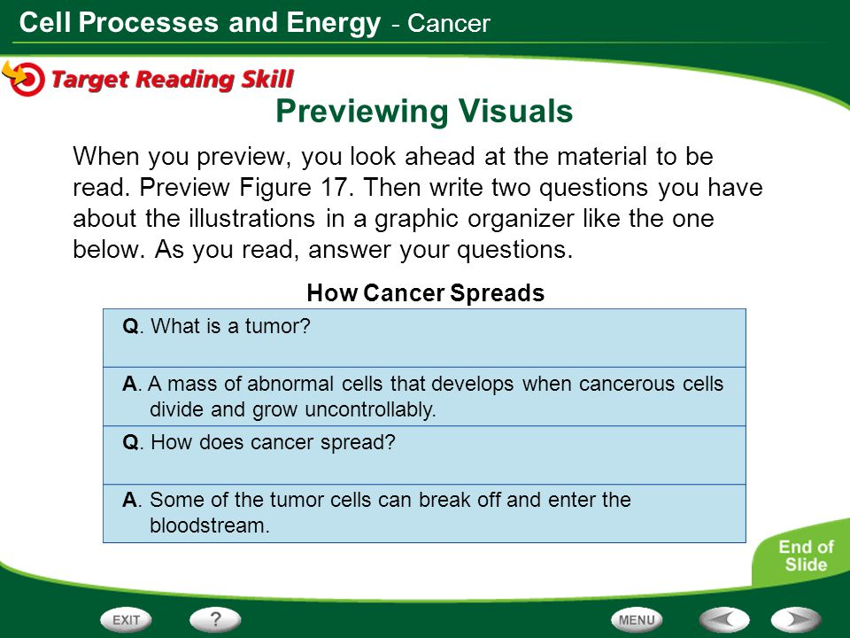 Cell Processes and Energy Previewing Visuals When you preview, you look ahead at the material to be read. Preview Figure 17. Then write two questions