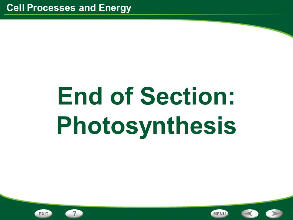 Cell Processes and Energy End of Section: Photosynthesis