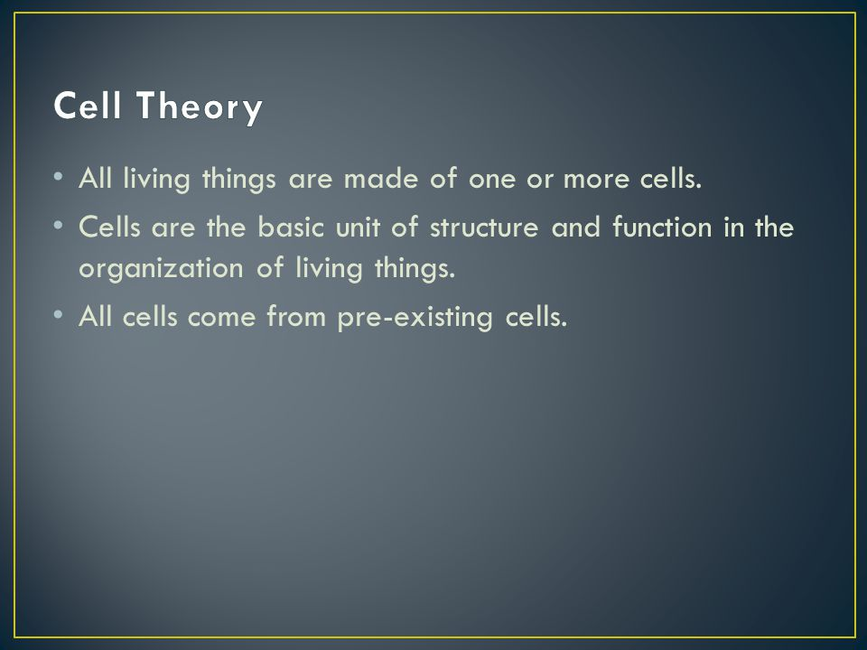 Cell Wall- extracellular structure of plant cells.