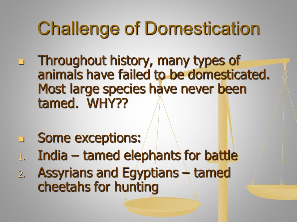 Challenge of Domestication Throughout history, many types of animals have failed to be domesticated. Most large species have never been tamed. WHY?? T
