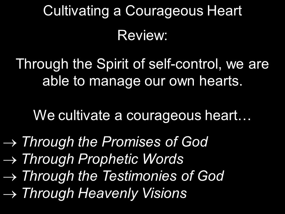 Cultivating a Courageous Heart Review: Through the Spirit of self-control, we are able to manage our own hearts.