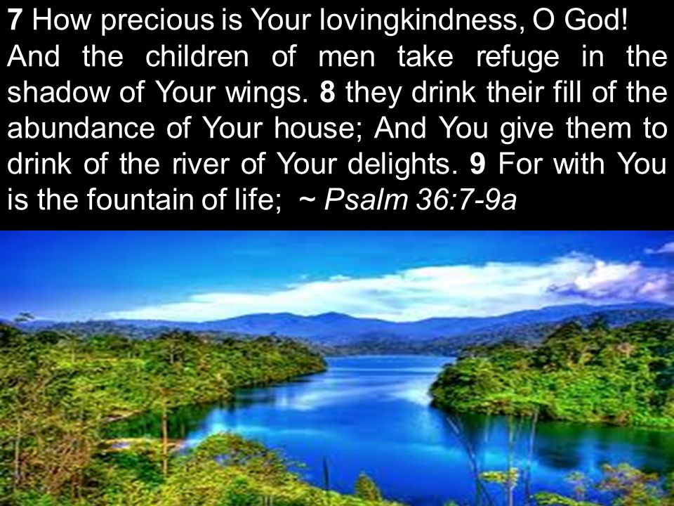 7 How precious is Your lovingkindness, O God.