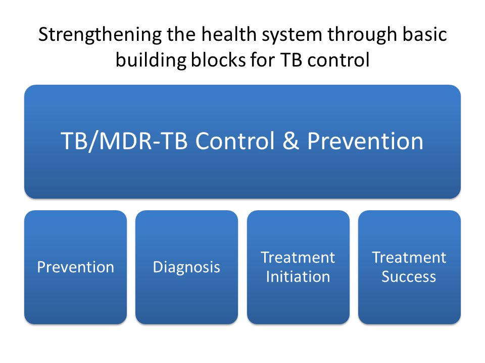 Strengthening the health system through basic building blocks for TB control