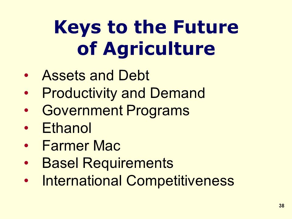 Keys to the Future of Agriculture Assets and Debt Productivity and Demand Government Programs Ethanol Farmer Mac Basel Requirements International Competitiveness 38