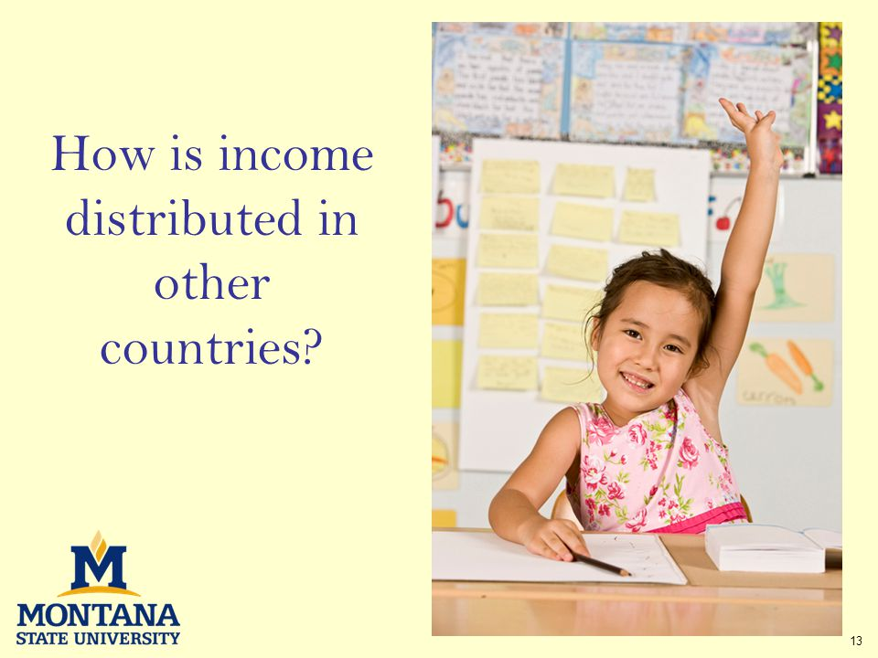 13 How is income distributed in other countries