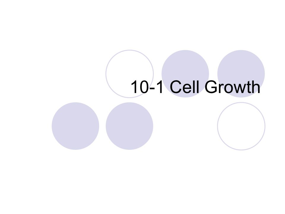 10-1 Cell Growth