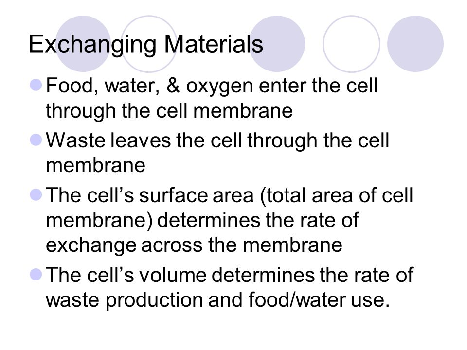 Exchanging Materials Food, water, & oxygen enter the cell through the cell membrane Waste leaves the cell through the cell membrane The cell's surface