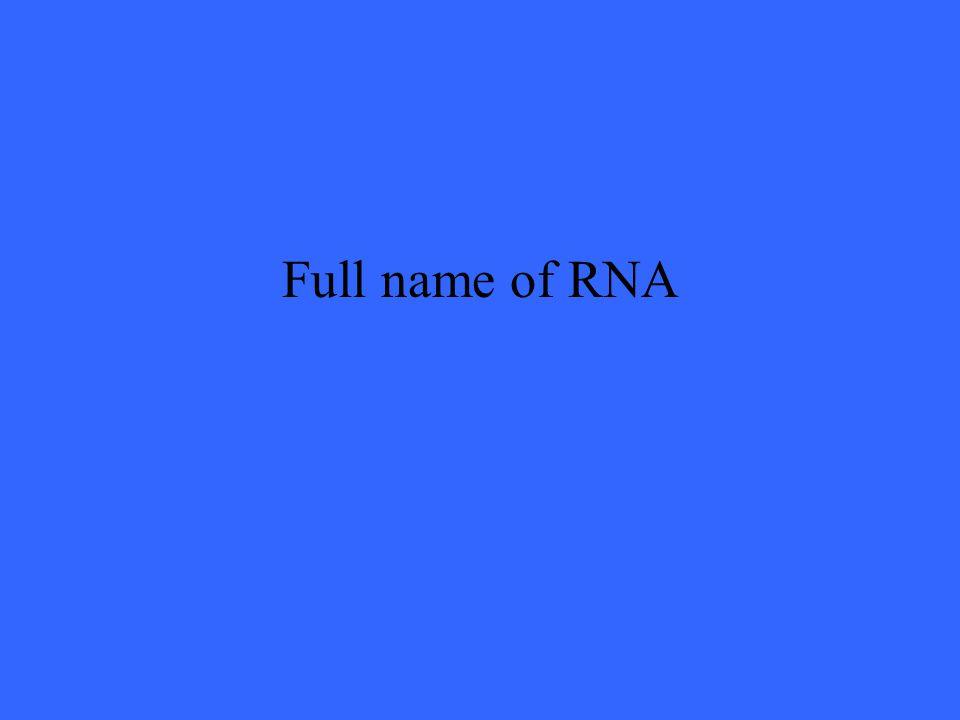 Full name of RNA