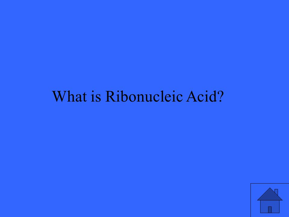 What is Ribonucleic Acid?
