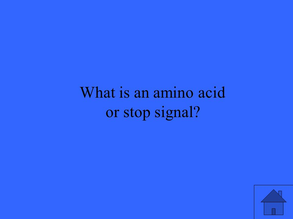 What is an amino acid or stop signal?