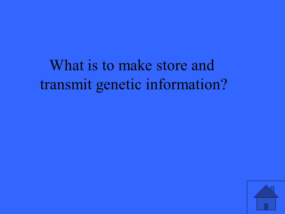 What is to make store and transmit genetic information?