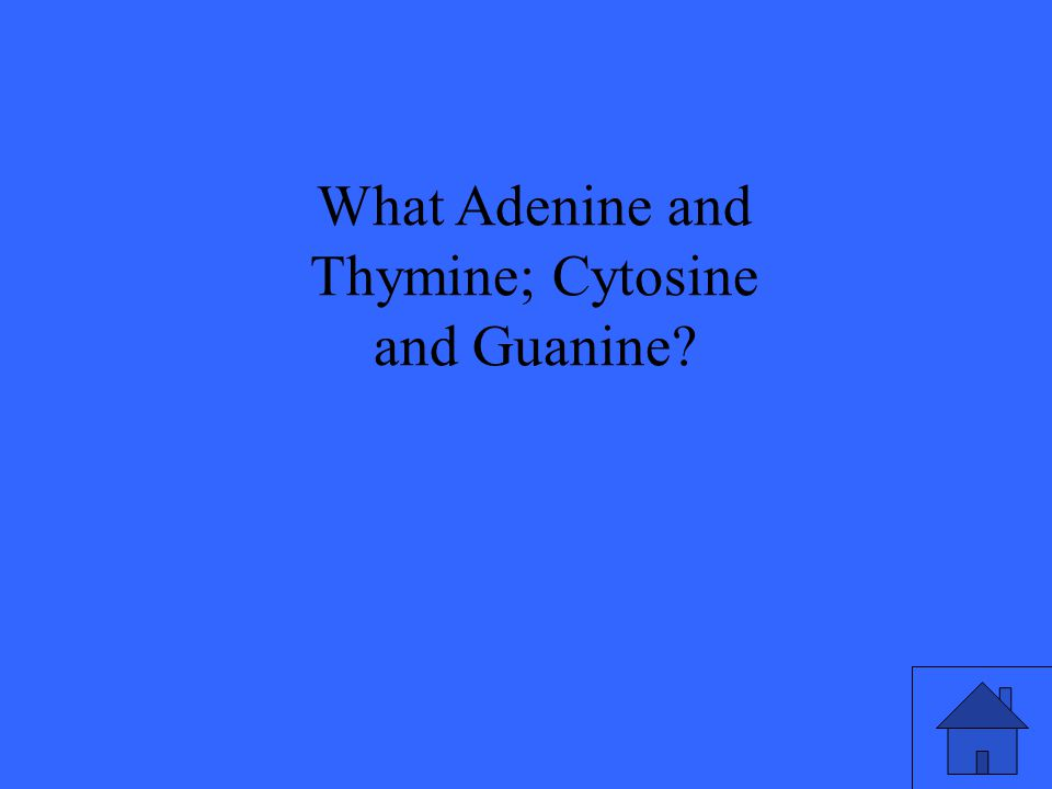 What Adenine and Thymine; Cytosine and Guanine?