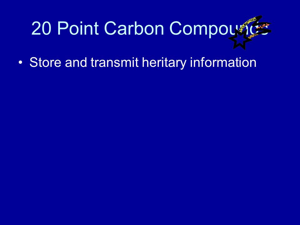 10 Point Carbon Compounds Answer What are carbohydrates