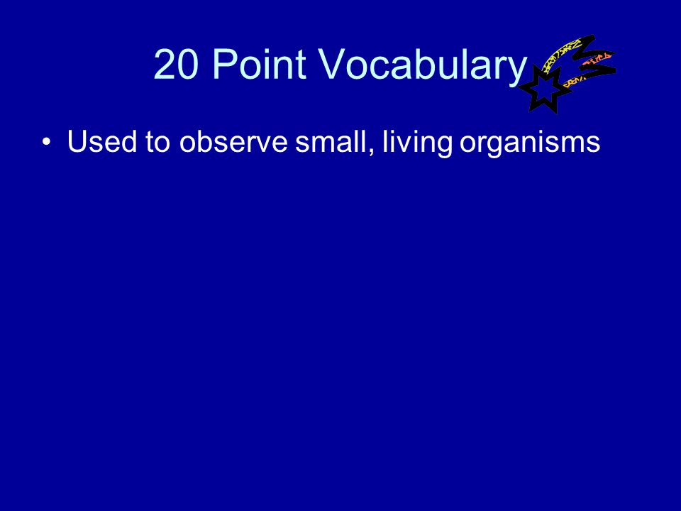 10 Point Vocabulary Answer What is a reactant