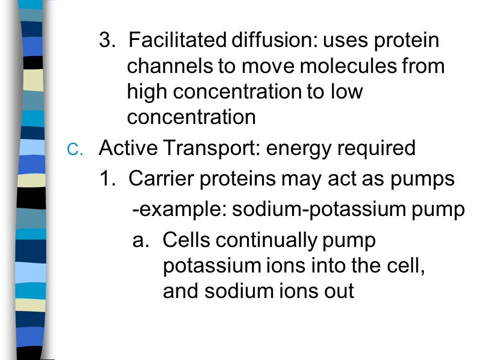 b. Important for muscle contraction and nerve impulse transmission Na + K+K+
